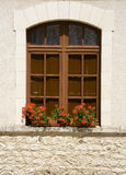 Flowers in the window Stock Photography