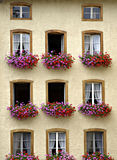 Flowers in the Window. Flowers in window boxes, In the historic town of Gruyeres, the home of the famous Swiss cheese Royalty Free Stock Images