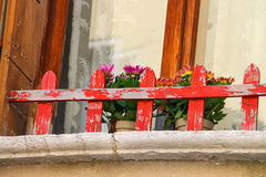Flowers at the window Royalty Free Stock Photography