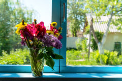 Flowers on the window Royalty Free Stock Photos