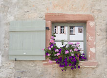 Flowers and Window boxes Stock Image