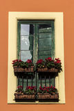 Flowers on the window in Italy Stock Photos