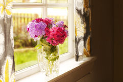 Flowers on window pane. Beautiful flowers on a window pane Royalty Free Stock Image