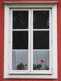 Flowers in the window Royalty Free Stock Images