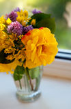 Flowers on window-sill Royalty Free Stock Photography
