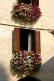 Asolo stock images