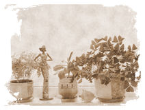 Flowers at windowsill. Against autumn day Stock Images