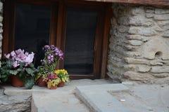 Flowers on windowsill royalty free stock photo