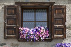 Flowers on windowsill of window with open shutters Stock Photo
