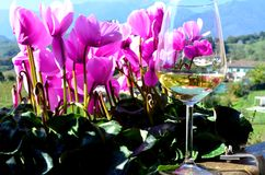 Flowers and wine Stock Photo