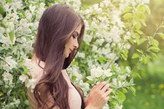 Flowers woman in blossom spring garden royalty free stock photos