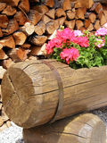 Flowers in the wood. A details of a wooden flowerpot Stock Images