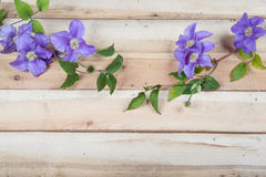 Flowers on the wood background Stock Photo