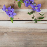 Flowers on the wood background Stock Photography
