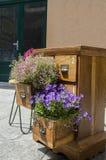 Flowers in wood lockers planter. Lovely purple flowers in wood lockers planter Royalty Free Stock Photos