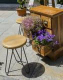 Flowers in wood lockers planter. Lovely purple flowers in wood lockers planter Stock Images