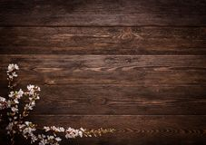 Flowers on wood texture background Royalty Free Stock Image