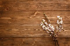 Flowers on wood texture background Stock Photography