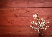 Flowers on wood texture background Royalty Free Stock Photos