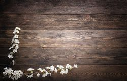 Flowers on wood texture background Royalty Free Stock Photo