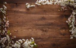 Flowers on wood texture background Royalty Free Stock Images