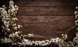 Flowers on wood texture background Stock Photos