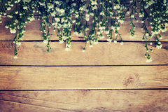 Flowers on wood texture background with copyspace. Vintage style Stock Photos