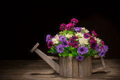 Flowers in a woodden pot Royalty Free Stock Image