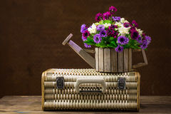 Flowers in a woodden pot. And retro suitcases Stock Photography