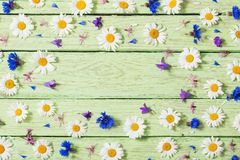 Flowers on a wooden background Stock Photography