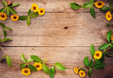 flowers on wooden background Stock Photo