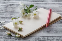 Flowers on wooden background with colour pencils Stock Photography