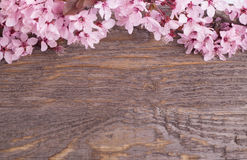 Flowers on wooden background Royalty Free Stock Image