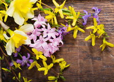Flowers on wooden background Royalty Free Stock Photography