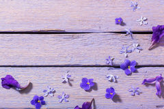 Flowers on wooden background Stock Photography