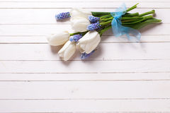 Flowers on wooden backgrouund. White tulips and blue muscaries flowers on white wooden background. Selective focus. Place for text royalty free stock photo