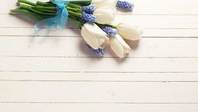 Flowers on wooden backgrouund. White tulips and blue muscaries flowers on white wooden background. Selective focus. Place for text stock photography