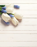 Flowers on wooden backgrouund. White tulips and blue muscaries flowers on white wooden background. Selective focus. Place for text. Toned image stock photo