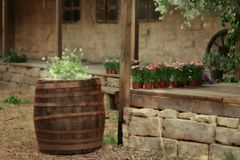Flowers in a wooden barrel Stock Images