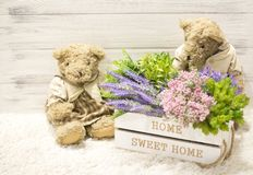 Flowers in a wooden box and cute bears. Flowers in a white wooden box, plush vintage bears. Romantic gift. Background for congratulations Stock Photos