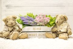 Flowers in a wooden box and cute bears. Flowers in a white wooden box, plush vintage bears. Romantic gift. Background for congratulations Stock Photography
