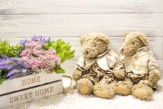 Flowers in a wooden box and cute bears. Flowers in a white wooden box, plush vintage bears. Romantic gift. Background for congratulations Stock Image