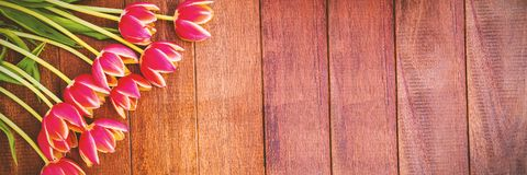 Flowers on wooden floor stock images