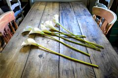 Flowers on wooden table Royalty Free Stock Photos