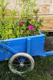 Flowers in a wooden wheelbarrow Royalty Free Stock Photography