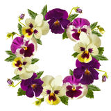 Flowers wreath. Stock Images