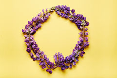 Flowers wreath Royalty Free Stock Images