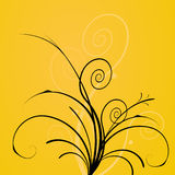 Flowers on yellow background. Stock Photos