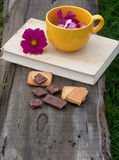 Flowers in the yellow mug, antique book, sweets Royalty Free Stock Photos
