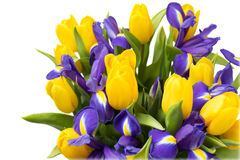 Flowers. Yellow tulip and iris bouquet Royalty Free Stock Photos